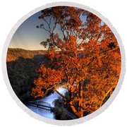 Amazing Tree At Overlook Round Beach Towel