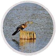American Anhinga Angler Round Beach Towel