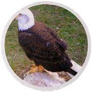 American Bald Eagle 1 Round Beach Towel