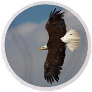 American Bald Eagle In Flight Round Beach Towel