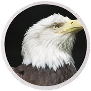 American Bald Eagle Profile Round Beach Towel by Richard Bryce and Family