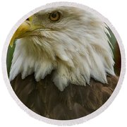 American Bald Eagle With American Flag Background Round Beach Towel by Anne Rodkin