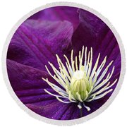 Amethyst Colored Clematis Round Beach Towel