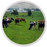 Amish Pastureland  Round Beach Towel