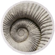 Ammonites Fossil Shell Round Beach Towel