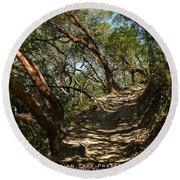 Among The Madrone Round Beach Towel