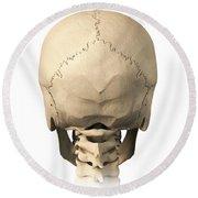 Anatomy Of Human Skull, Rear View Round Beach Towel