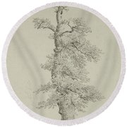 Ancient Oak Tree With A Storks Nest Round Beach Towel