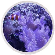 Anemone Starlight Round Beach Towel by Susan Molnar