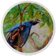 Angel Bird Of  North Moluccas Round Beach Towel