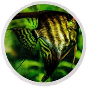 Angel Fish Round Beach Towel by Lisa Brandel