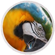 Angry Bird Round Beach Towel by Joseph G Holland
