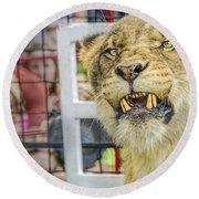 Angry Circus Lion Round Beach Towel
