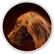 Round Beach Towel featuring the photograph Angus Irish Red Setter by Wallaroo Images