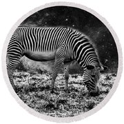 Animal Night Round Beach Towel