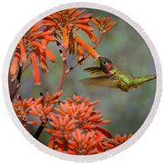 Anna's Hummingbird Round Beach Towel