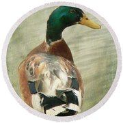 Another Duck ... Round Beach Towel