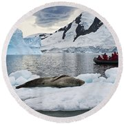 Antarctic Serenity... Round Beach Towel