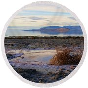 Round Beach Towel featuring the photograph Antelope Island - Tumble Weed by Ely Arsha