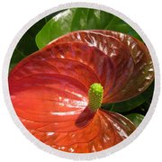 Anthurium Round Beach Towel