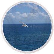 Antigua - In Flight Round Beach Towel