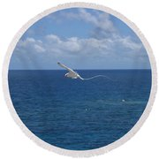 Antigua - In Flight Round Beach Towel