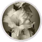 Antiqued Gladiolus Round Beach Towel