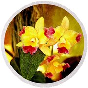 Aos Yellow Orchid 1 Round Beach Towel