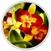 Aos Yellow Orchid 2 Round Beach Towel