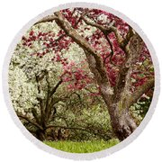 Apple Blossom Colors Round Beach Towel by Joe Mamer