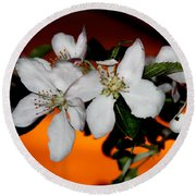 Apple Blossom Sunrise I Round Beach Towel