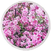 Apple Blossoms Round Beach Towel by Aimee L Maher Photography and Art Visit ALMGallerydotcom