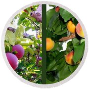 Round Beach Towel featuring the photograph Apples And Apricots by Will Borden