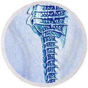 Round Beach Towel featuring the digital art Aqua Seahorse- Left by Jane Schnetlage
