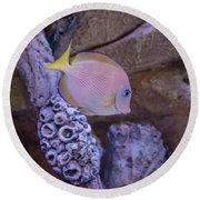 Aquarium Impression Round Beach Towel