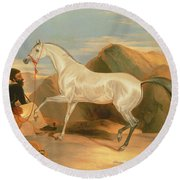 Arab Stallion Round Beach Towel