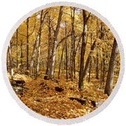 Arboretum Trail Round Beach Towel by Steven Ralser