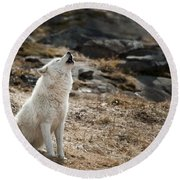 Round Beach Towel featuring the photograph Arctic Wolf Howling by Wolves Only