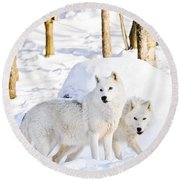 Arctic Wolves Round Beach Towel by Cheryl Baxter