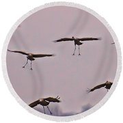 Round Beach Towel featuring the photograph Are You Sure This Is The Spot by Don Schwartz