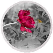 Arriving On The Mystical Peony Round Beach Towel