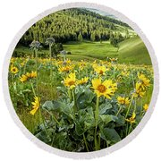 Round Beach Towel featuring the photograph Arrow Leaf Balsam Root by Jack Bell