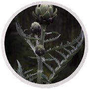 Round Beach Towel featuring the photograph Artichoke by Jocelyn Friis