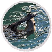Artsy Sea Lion Round Beach Towel by Susan Wiedmann