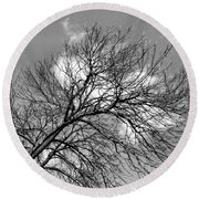 Round Beach Towel featuring the photograph Ash And Light by Robyn King