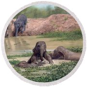 Asian Elephants - In Support Of Boon Lott's Elephant Sanctuary Round Beach Towel