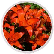 Asiatic Lily Round Beach Towel by Sue Smith