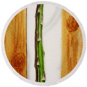 Asparagus Tasty Botanical Study Round Beach Towel