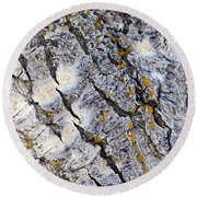 Aspen Bark Round Beach Towel by Dee Cresswell