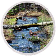 Round Beach Towel featuring the photograph Aspen Crossing Mountain Stream by Barbara Chichester